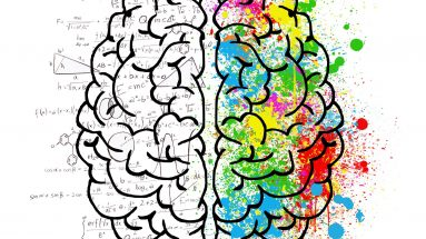 Dimensionen des Lernen