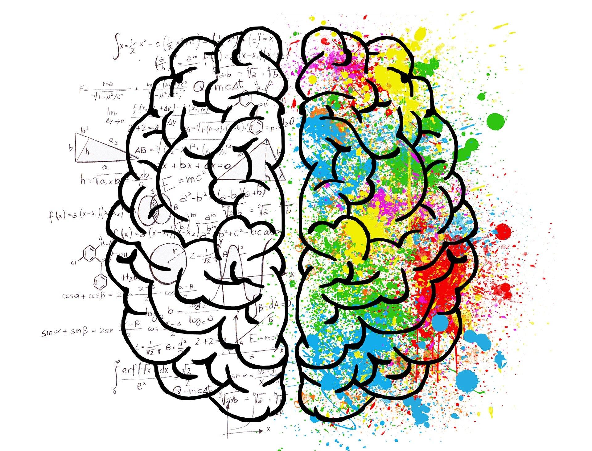 Die fünf Dimensionen des Lernens